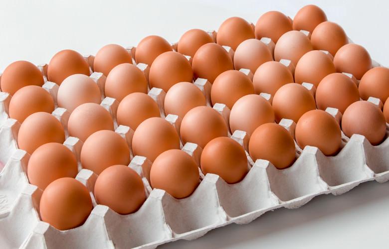 小林農園の平飼い卵